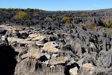 Tsingy De Bemaraha - Mahajanga - Madagascar