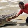 Tuaran Crocodile Farm - Crocodile