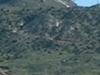 Tuc Mt
