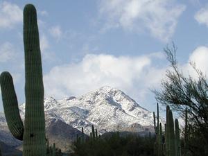 Tucson Montañas