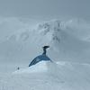 @ Turoa Ski Field - Tongariro - North Island NZ