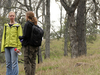 Two Bar Ridge Trail 119 - Tonto National Forest - Arizona - USA