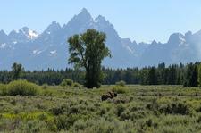 Two Ocean & Emma Matilda Lakes Trail - Grand Tetons - Wyoming - USA