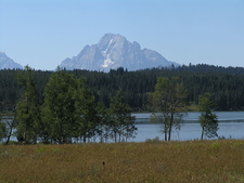 Two Ocean Lake View - Grand Tetons - Wyoming - USA