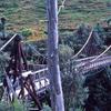 Bridge Over Tangarakau River