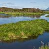 Tarawera River