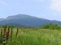 Bieszczady National Park