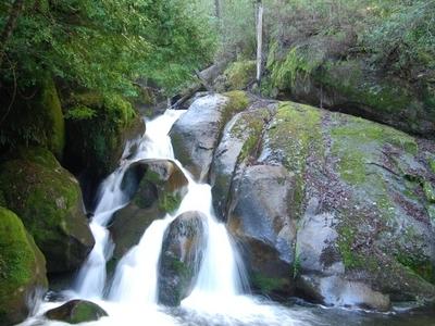 Yarra Ranges National Park Waterfall