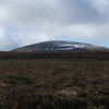 The Cheviot From Broadhope Hill