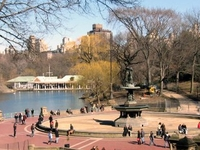 The Ramble And Lake Central Park