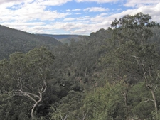 Mitchell River National Park
