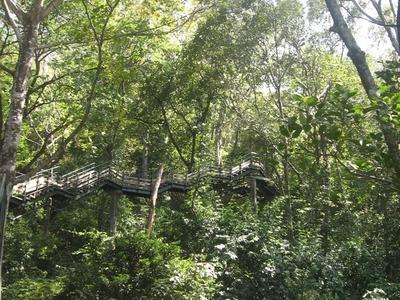 Thenmala Adventure Zone