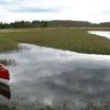 Raudna River At Soomaa National Park