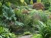 The Rock Garden Fletcher Moss