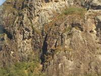 Monte Tibrogargan