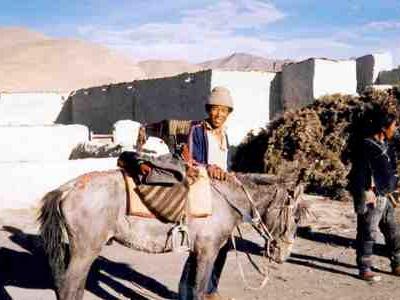 Tingri Dzong