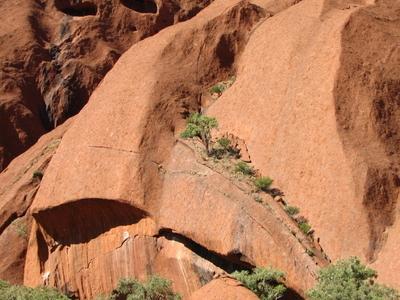 The Crevasses On Uluru