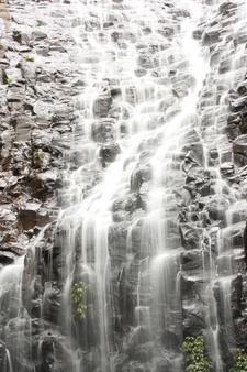 Tristania Falls On Wonga Walk