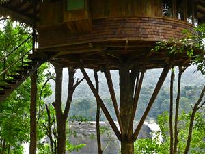 Rainforest-Athirapally