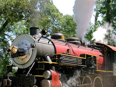 Texas State Railroads Steam Locomotive