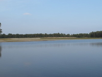 De Maasduinen National Park