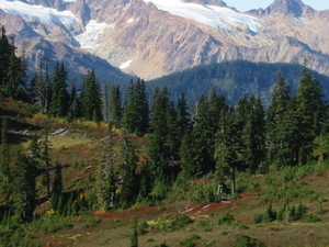 Sisters Twin Mountain