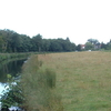 Tylers Cut At Dilham
