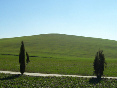 Typical Landscape Of The Val Dorcia