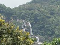 Udzungwa Rainforest Mountain NP