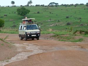 9 Days Uganda Wildlife Safari