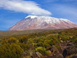 Kilimanjaro's Machame Make A Wish Climb Photos