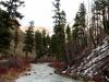 Ukiah Dale Forest State Scenic Corridor