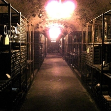 Underground Wine Cellar Of Pontet Canet