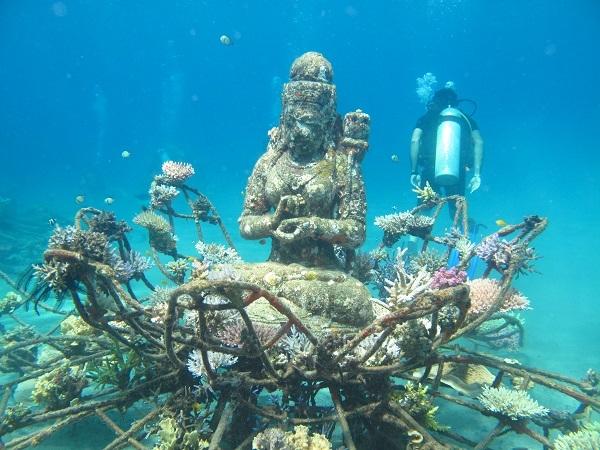 Scuba Diving - Bali Photos