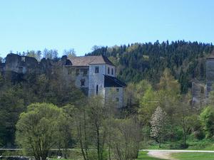 Reichenstein Castle