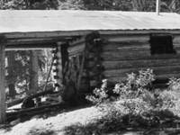 Upper Park Creek Cabin Patrol