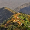 Usumbara Mountains @ Mtae In Tanzania