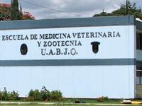 Benito Juarez Autonomous University of Oaxaca