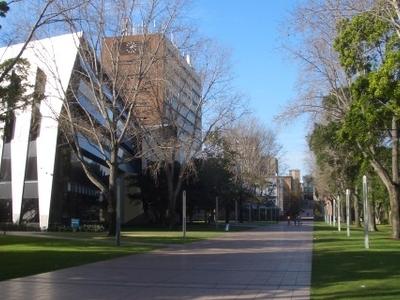 Main Walkway, Lower Campus