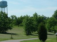 University Of Kentucky Arboretum