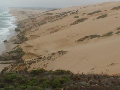Guadalupe Nipomo Dune  Guadalupe