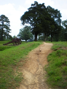 U S Cannon And Earthworks At Yorktown National Battlefield