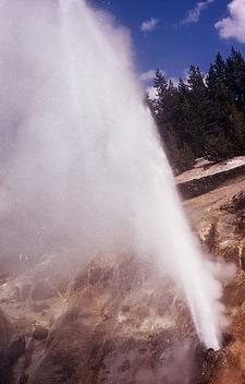 Valentine Geyser - Yellowstone - USA