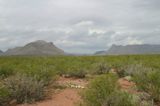Marfa Is In The Chihuahuan Desert