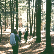 Vaughan Woods State Park