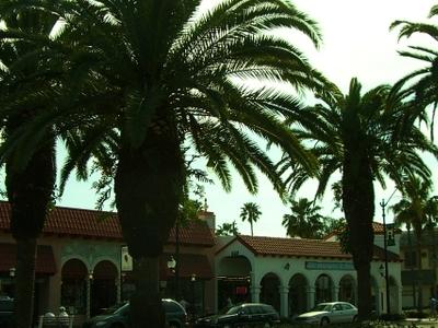 Venice  Florida