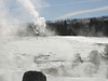 Vent Geyser - Yellowstone - USA