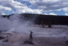 Veteran Geyser - Yellowstone - USA