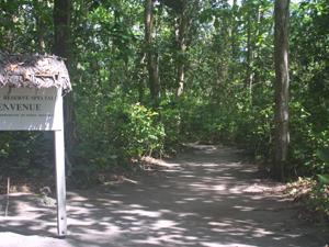 Veuve Reserve