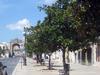Settembre In Manduria